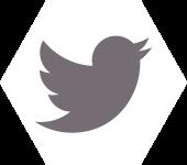 ZakelijkeTrainer.nl-twitter